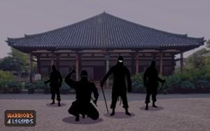 Ninja Warrior Roles 1