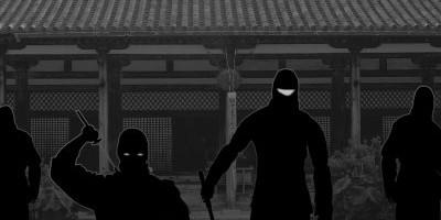 Ninja Warrior Roles