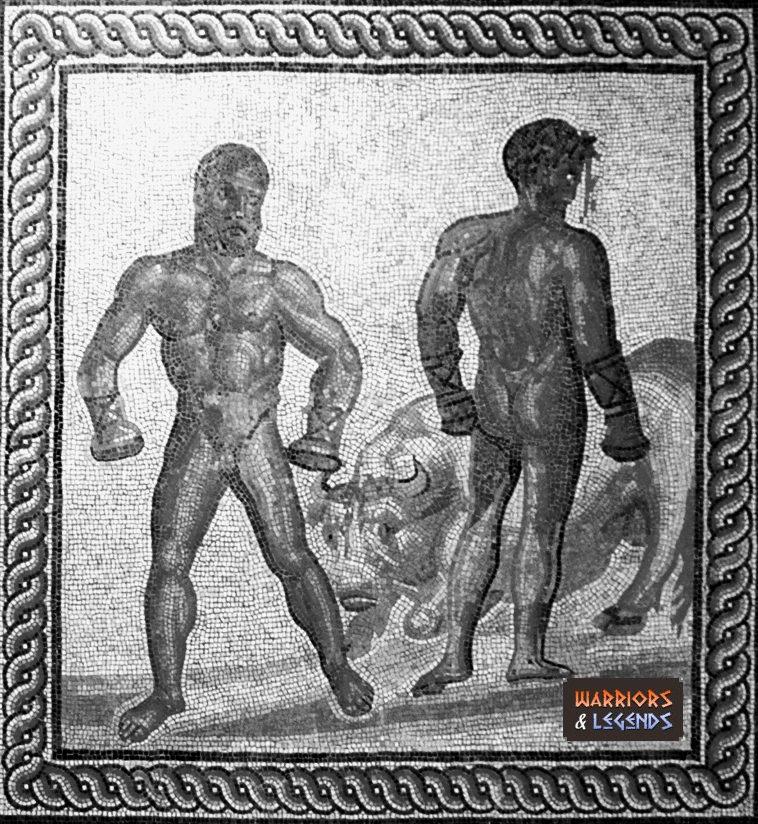 cestus gladiator 1