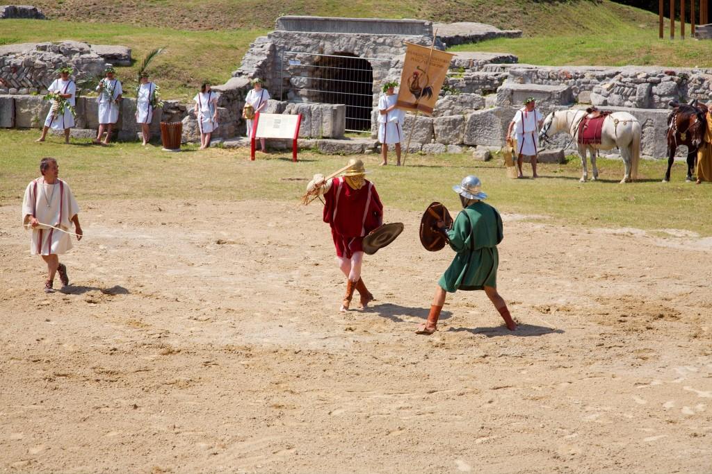 parmalarius gladiator 1